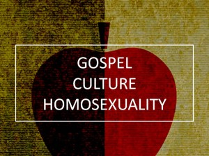 Gospel, Culture, and Homosexuality